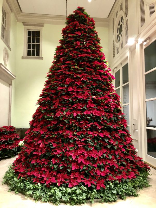 Holiday Lights at Cheekwood: one of the best Nashville Holiday Events, featured by top Nashville blogger, Greta Hollar.