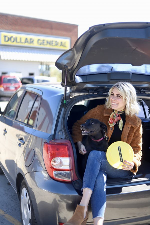 Dollar General | The One Stop Shop for All Your Pet Accessories featured by top Nashville lifestyle blog Greta Hollar