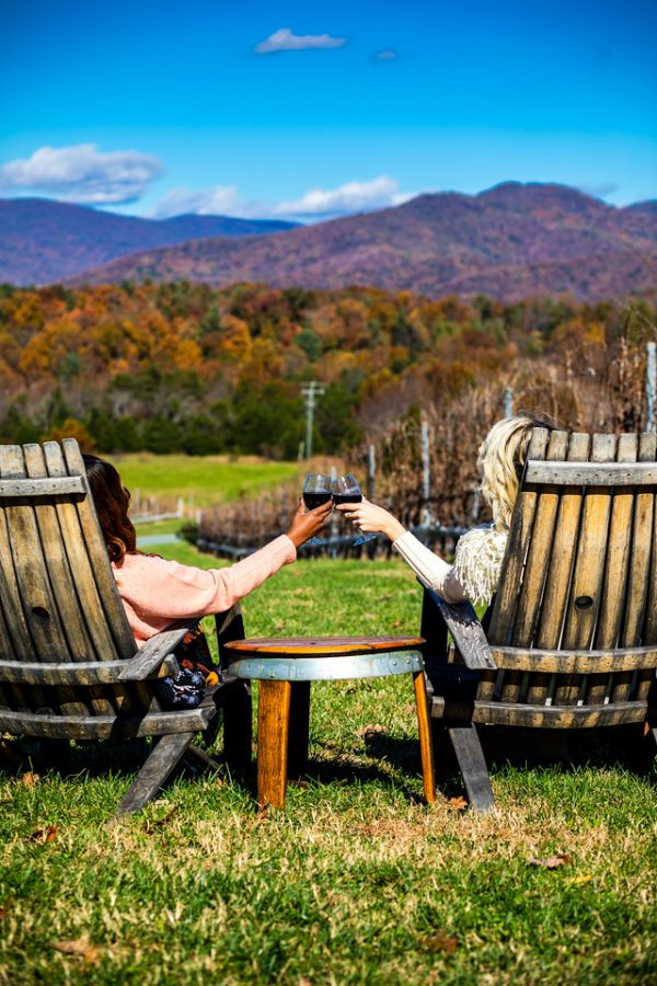 Top 5 Wineries in Charlottesville, VA