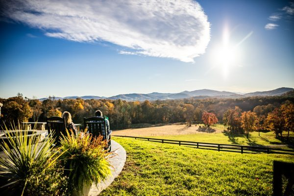 5 of My Favorite Wineries in Charlottesville, VA | Greta Hollar| Wineries in Charlottesville featured by top Nashville travel blogger, Greta Hollar: Afton Mountain Vineyards