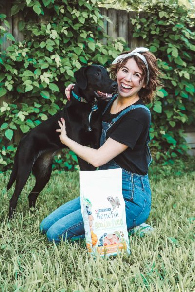 1 Year Update on Fitzy - How Her Puppy Quirky Traits Have Held Up | Greta Hollar