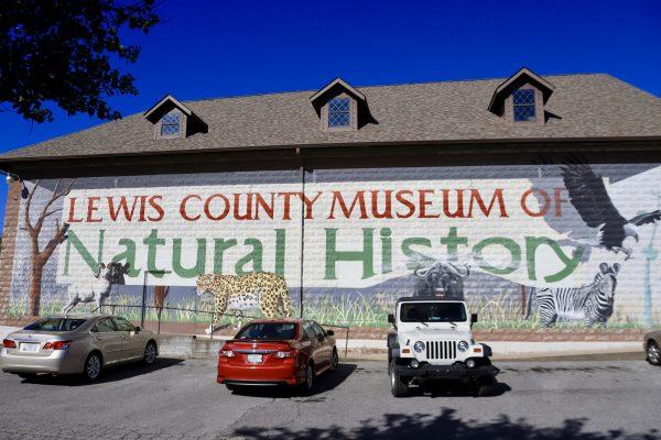 A Couples Getaway to Hohenwald, TN   Greta Hollar   A Couples Getaway: Things to do in Hohenwald TN by popular Nashville travel blogger, Greta Hollar: image of Lewis County Museum of Natural History.