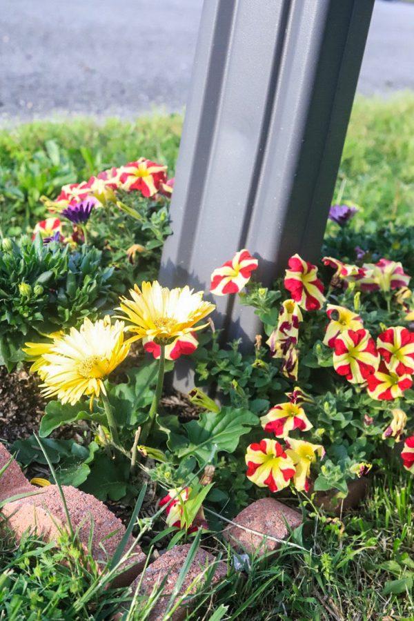 How to Get Your Garden Ready for Spring | Greta Hollar
