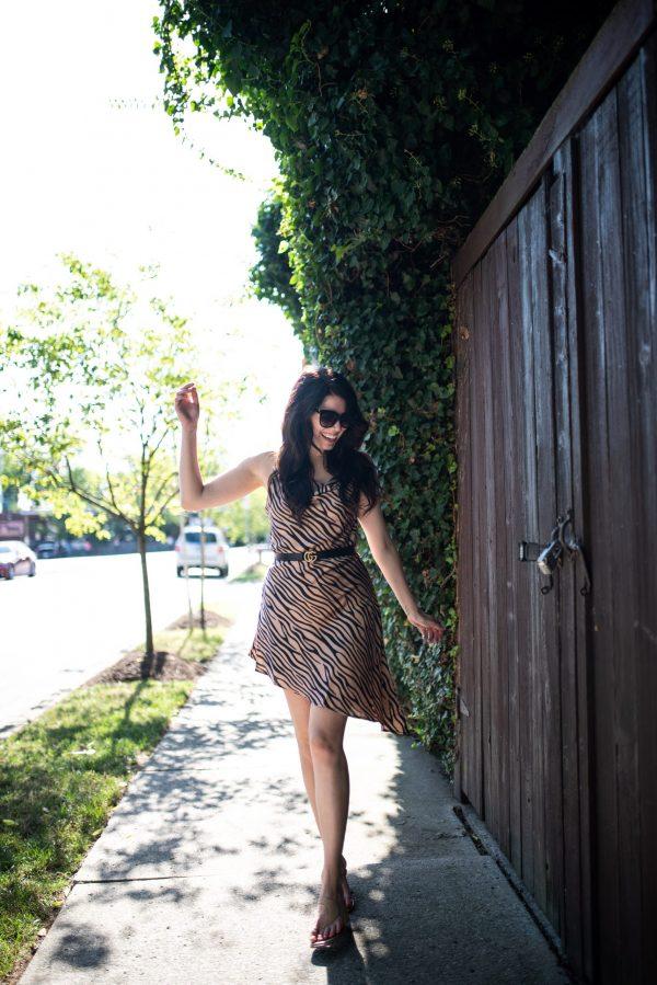 Top 7 Amaryllis Apparel Favorites for the Tall Girl | Greta Hollar | Amaryllis Apparel by popular Nashville tall fashion blogger, Greta Hollar: image of a woman walking outside and wearing a Amaryllis Tiger Tilt Dress and Gucci belt.