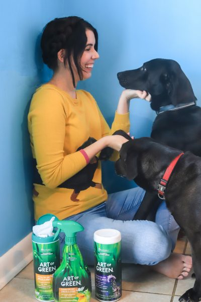 Pet Safe Cleaners: How to Clean your Home with Cleaning Products that Are Safe for Dogs   Greta Hollar