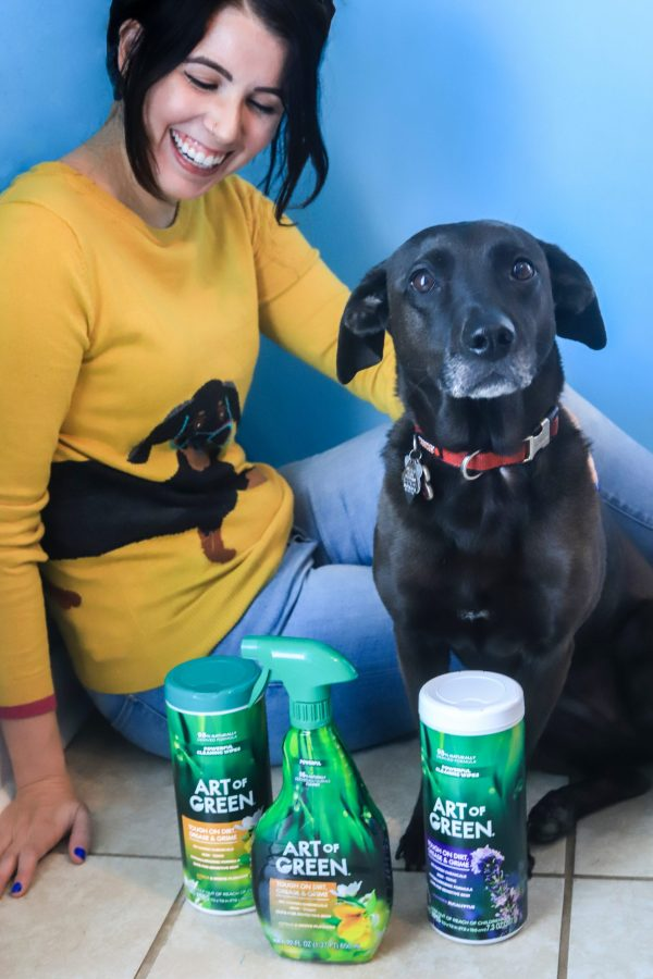 Pet Safe Cleaners: How to Clean your Home with Cleaning Products that Are Safe for Dogs | Greta Hollar