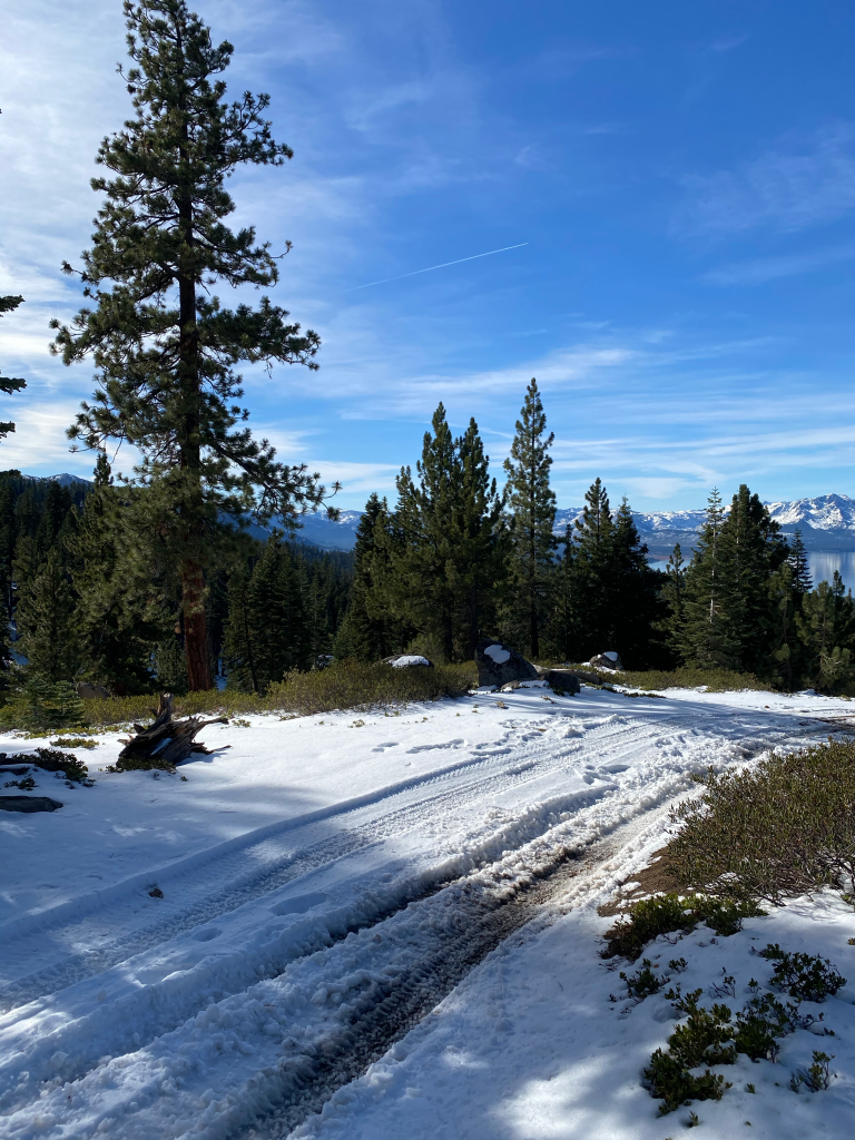 #SierraSafely with Carson Valley & Tahoe South | Greta Hollar