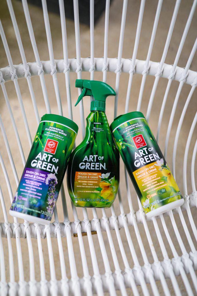 3 Patio Cleaning Tips With Art of Green   Greta Hollar